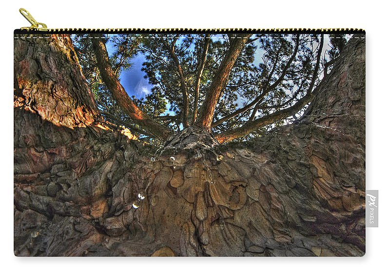 Forest Lawn Carry-all Pouch featuring the photograph How Sweet It Is by Michael Frank Jr
