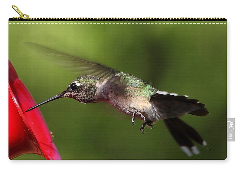 Reid Callaway Hummingbird Carry-all Pouch featuring the photograph Look Hummingbird Eyelashes by Reid Callaway