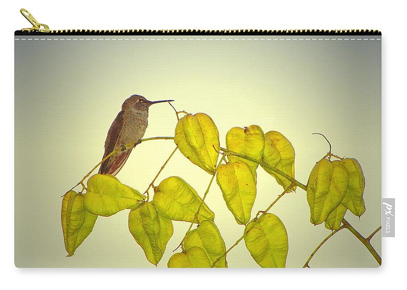 Bird Carry-all Pouch featuring the photograph Hummer Lookout by Joyce Dickens