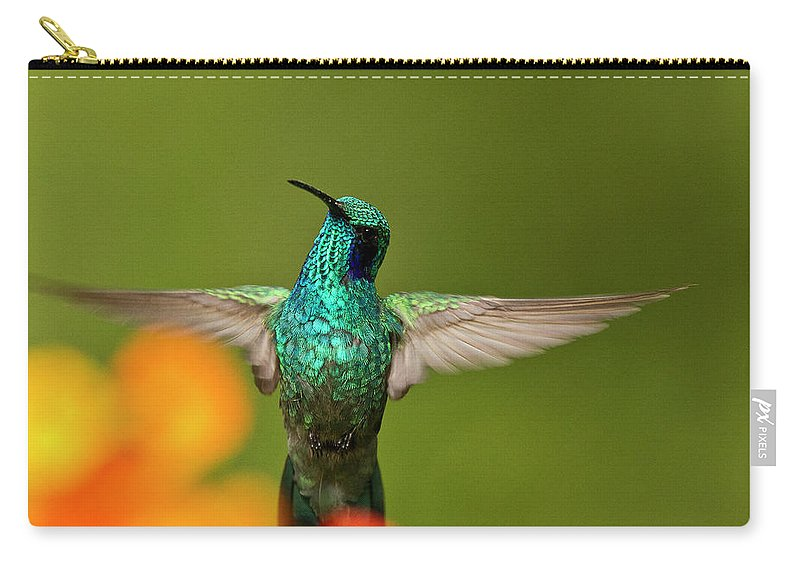 Bird Carry-all Pouch featuring the photograph Humming Along by Heiko Koehrer-Wagner