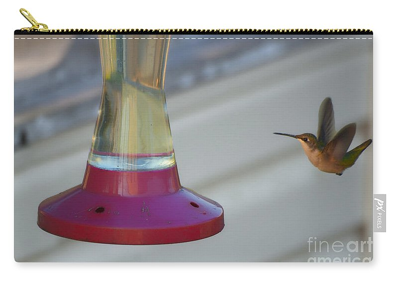 Humming Bird Carry-all Pouch featuring the photograph Humming Bird Approaching by Thomas Woolworth