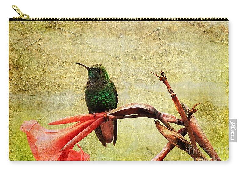 Bird Carry-all Pouch featuring the photograph Hummingbird 1 by Teresa Zieba
