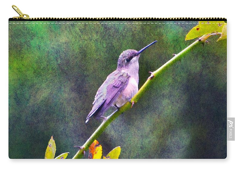 Bird Carry-all Pouch featuring the photograph Hummingbird 2 by Deena Stoddard