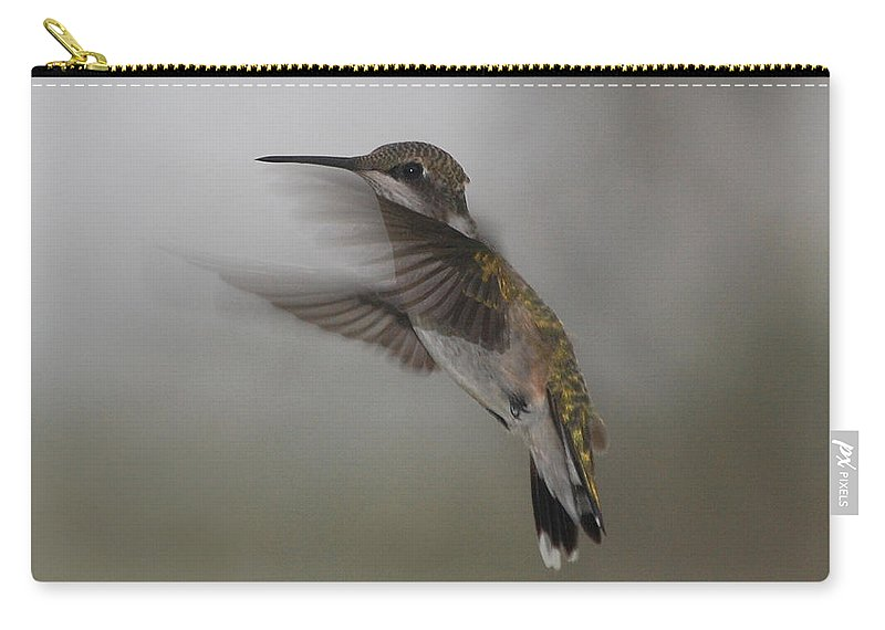 Ruby Carry-all Pouch featuring the photograph Hummingbird 6 by Leticia Latocki