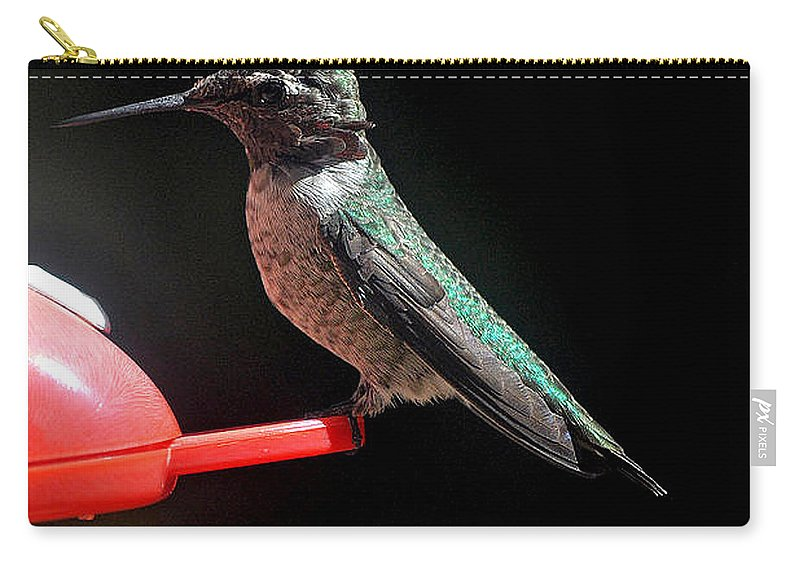 Animal Carry-all Pouch featuring the photograph Hummingbird Anna's Posing For The Camera by Jay Milo
