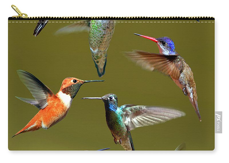 Nature Carry-all Pouch featuring the photograph Hummingbird Collage by David Salter