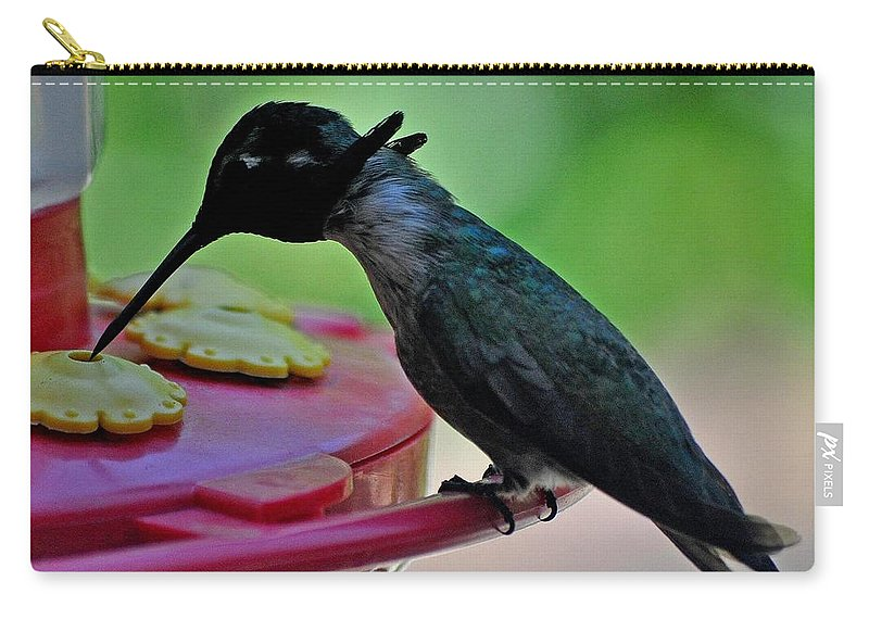 Hummingbird Carry-all Pouch featuring the photograph Hummingbird Costa's At The Feeder by Jay Milo