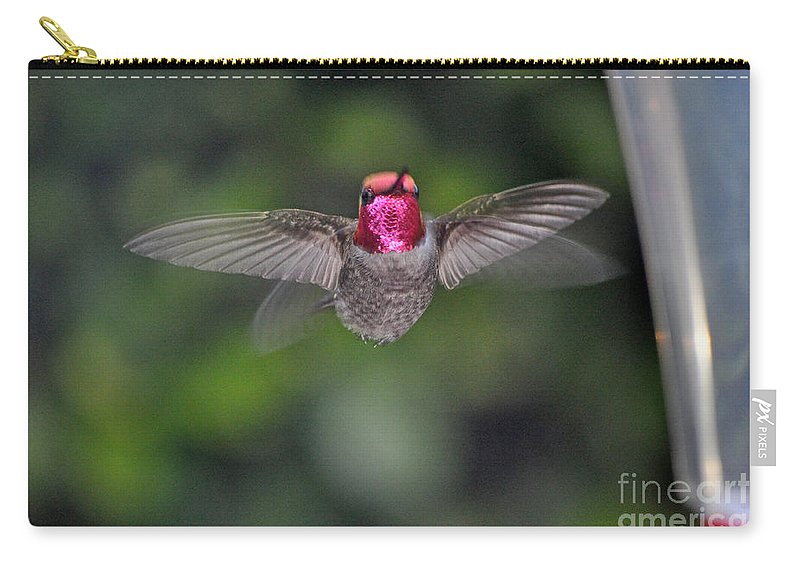 Animal Carry-all Pouch featuring the photograph Hummingbird Male Anna's Flapping His Wings by Jay Milo