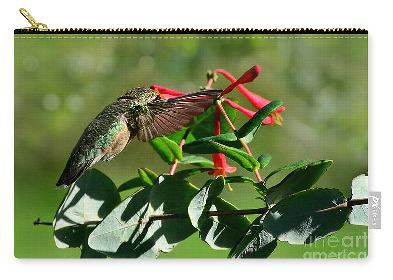 Nature Carry-all Pouch featuring the photograph Hummingbird Morning by Debbie Portwood