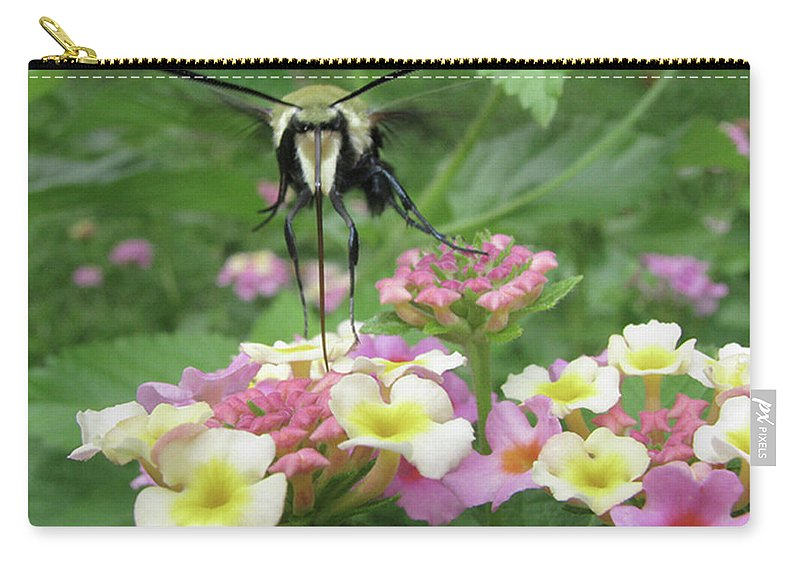 Insect Carry-all Pouch featuring the photograph Hummingbird Moth by Donna Brown
