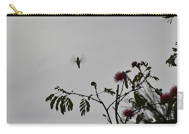 Linda Brody Carry-all Pouch featuring the photograph Hummingbird Silhouette I by Linda Brody