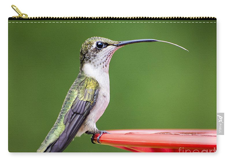 Hummingbird Feathers Carry-all Pouch featuring the photograph Hummingbird Sticky Her Tongue Out by TJ Baccari