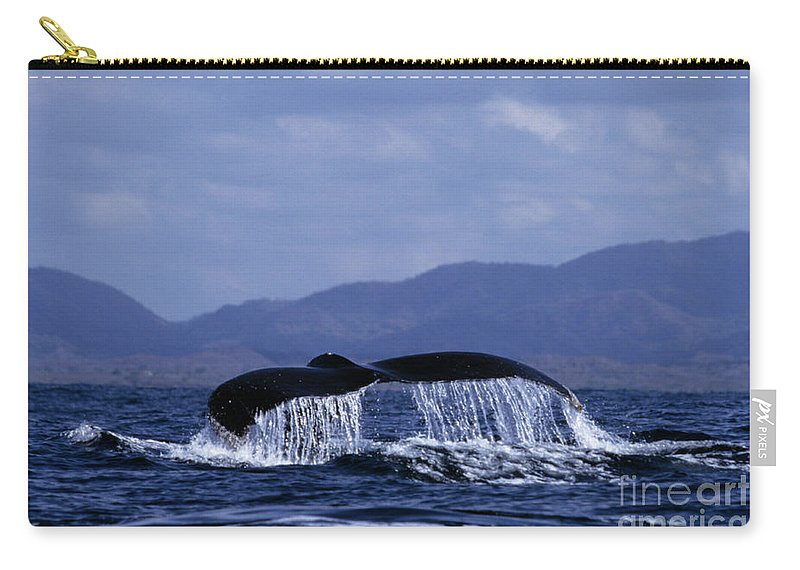 Nature Carry-all Pouch featuring the photograph Hump Backed Whale Tail With Cascading Water by John Harmon