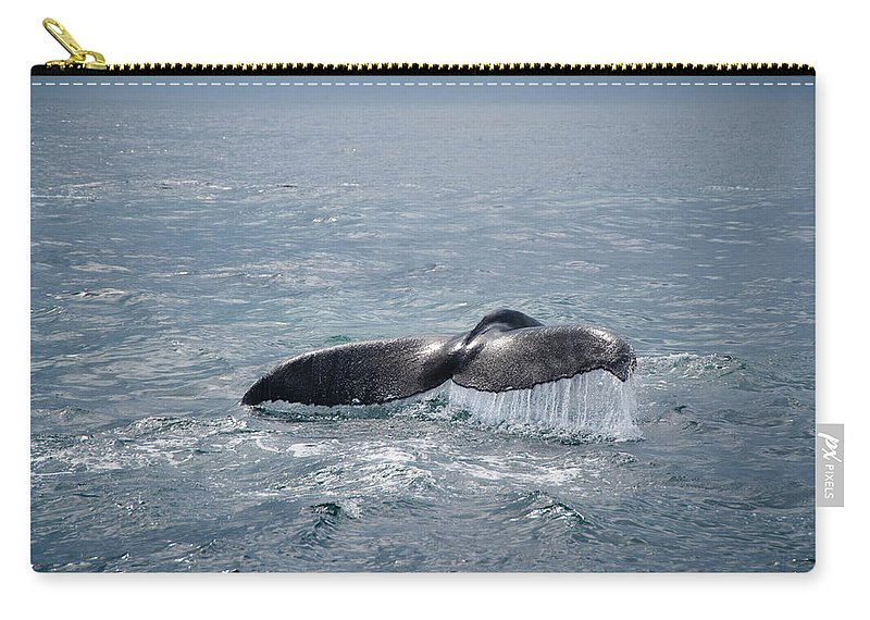 Cape Cod Carry-all Pouch featuring the photograph Humpback Whale Tail by Zina Zinchik