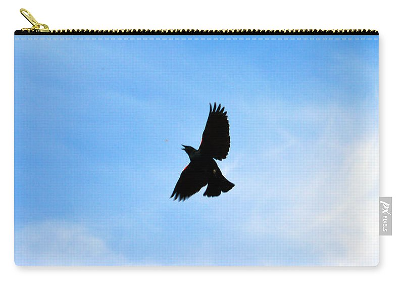 Black Bird Carry-all Pouch featuring the photograph Hungry Bird by Brent Dolliver