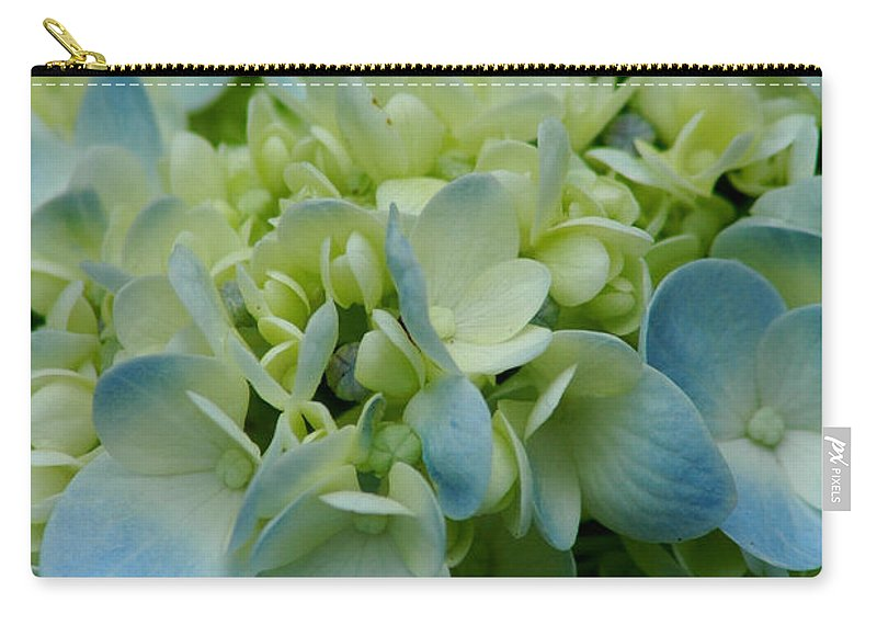 Flower Carry-all Pouch featuring the photograph Hydrangea 2 by David Weeks