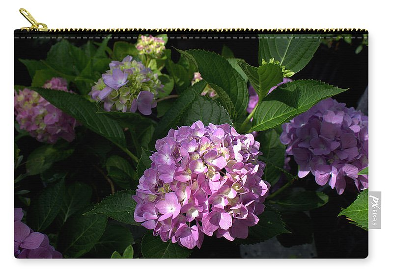 Hydrangeas Carry-all Pouch featuring the photograph Hydrangeas Vi by Beth Vincent