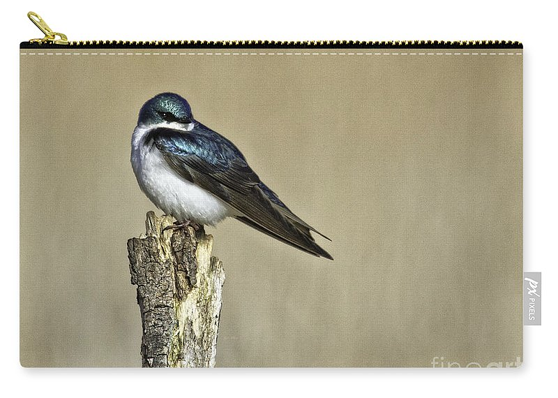 Songbird Carry-all Pouch featuring the photograph I Am Gorgeous by Jan Killian
