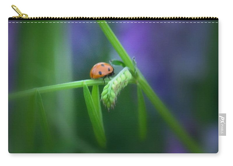 I Found A Ladybug Carry-all Pouch featuring the photograph I Found A Ladybug by Maria Urso