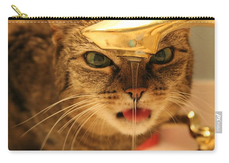 Cat Carry-all Pouch featuring the photograph I Just Want A Drink by Catie Canetti