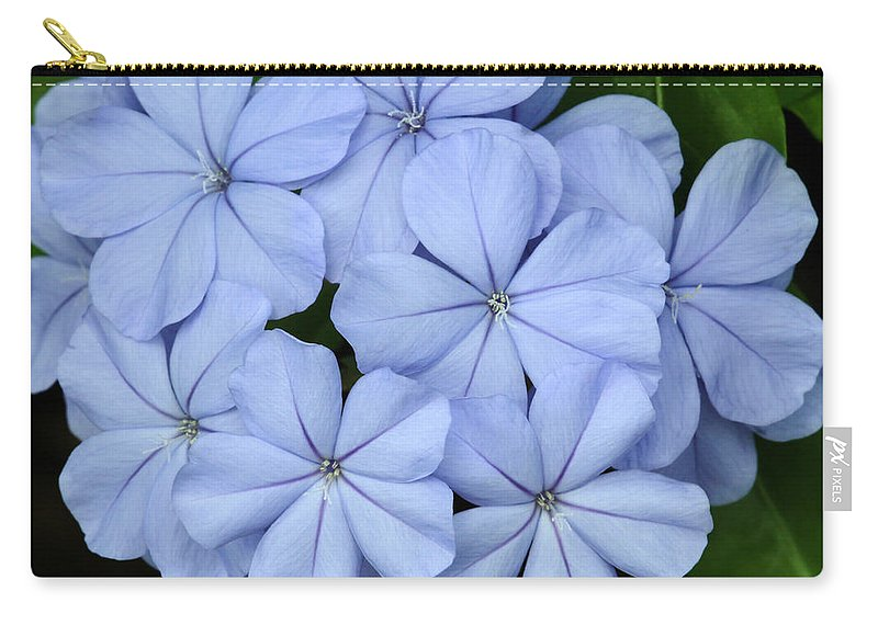 Macro Carry-all Pouch featuring the photograph I Love Blue Flowers by Sabrina L Ryan