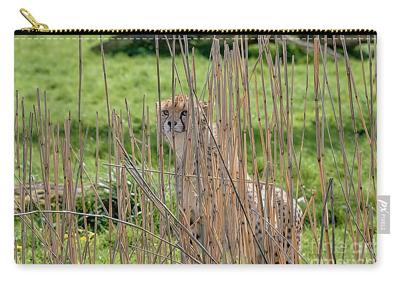 Cheetah Canvas Carry-all Pouch featuring the photograph I See You by Chris Thaxter