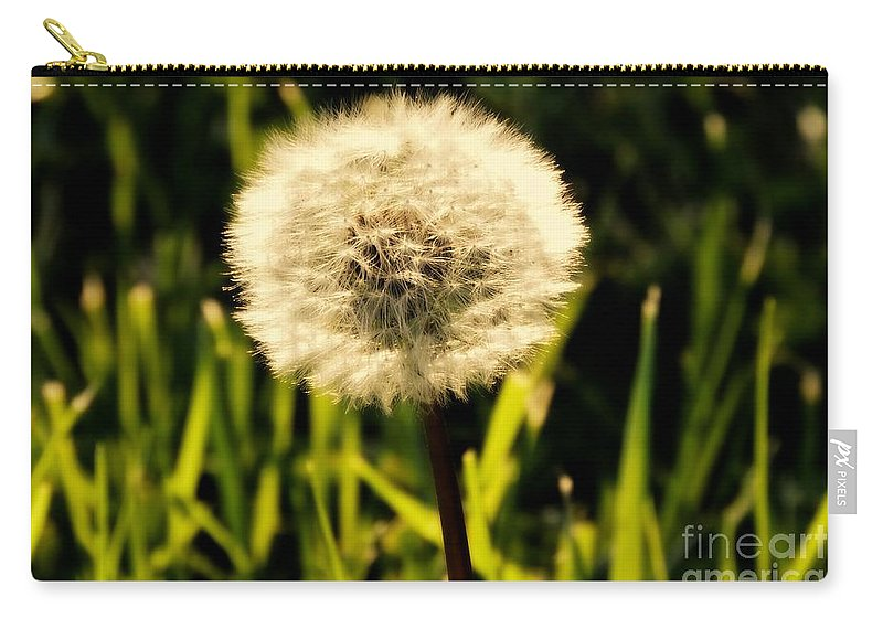 Dandelion Carry-all Pouch featuring the photograph I Will Remember You by Tami Quigley