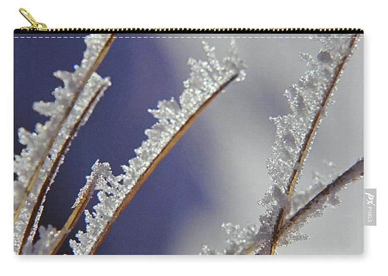 Ice Carry-all Pouch featuring the photograph Ice Crystals On Fireweed Fairbanks Alaska By Pat Hathaway 1969 by California Views Archives Mr Pat Hathaway Archives