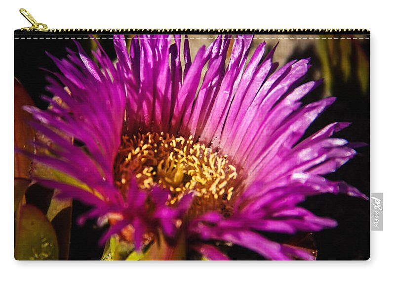 Califorina Coast Carry-all Pouch featuring the photograph Ice Plant by Robert Bales