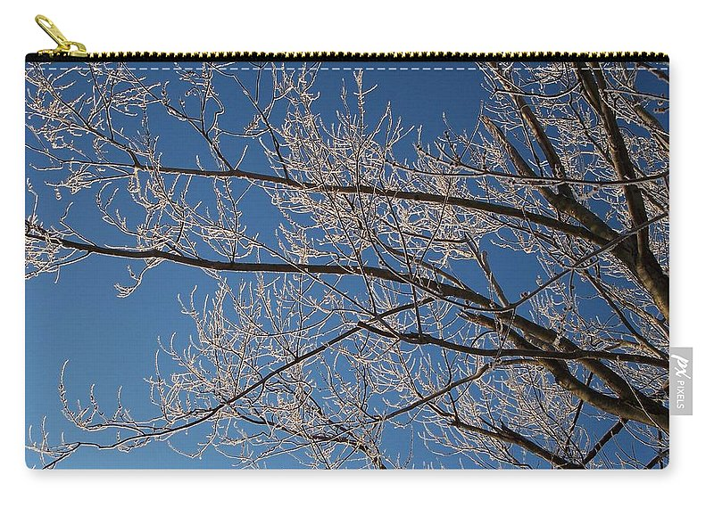 Branches Carry-all Pouch featuring the photograph Ice Storm Branches by Michelle Miron-Rebbe