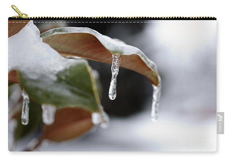 Ice Carry-all Pouch featuring the photograph Iced Magnolia by Terri Winkler