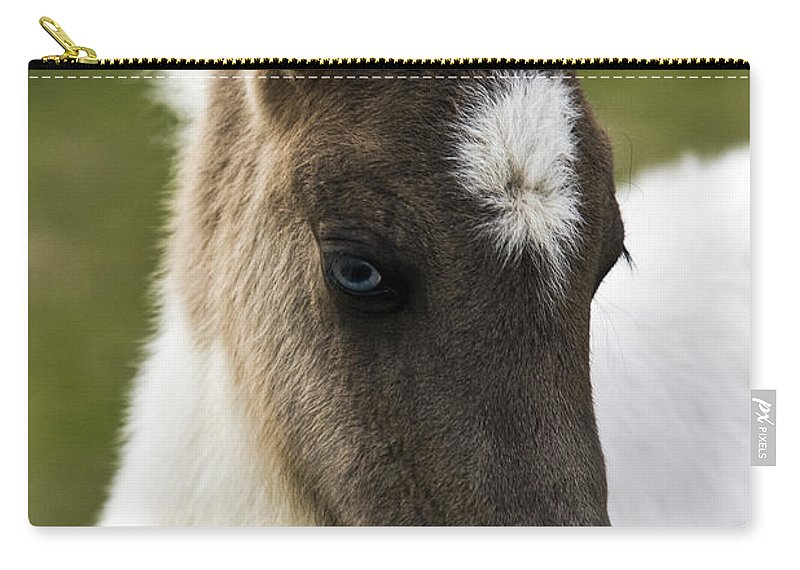 Horse Carry-all Pouch featuring the photograph Icelandic Horse by Gunnar Orn Arnason
