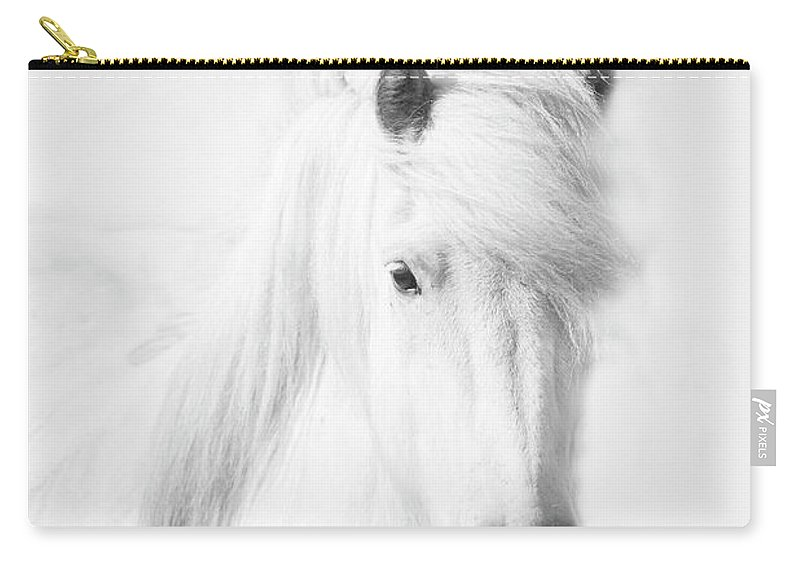 White Background Carry-all Pouch featuring the photograph Icelandic Pony In White by Grant Faint