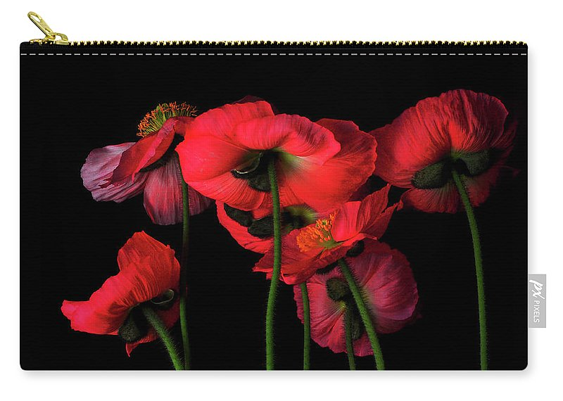 California Carry-all Pouch featuring the photograph Icelandic Poppies - The View From Down by Bill Gracey