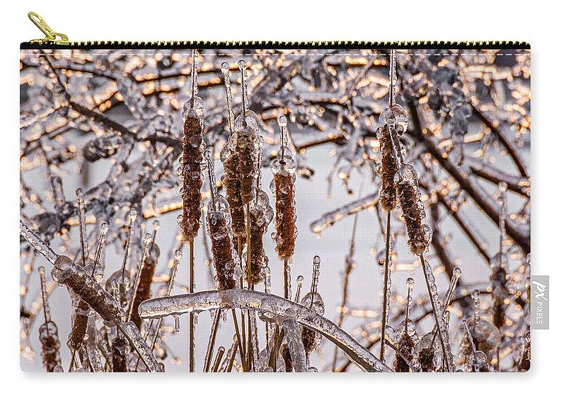Steve Harrington Carry-all Pouch featuring the photograph Icy Cattails by Steve Harrington