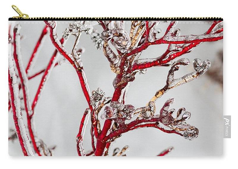 Red Carry-all Pouch featuring the photograph Icy Red Dogwood by Les Palenik