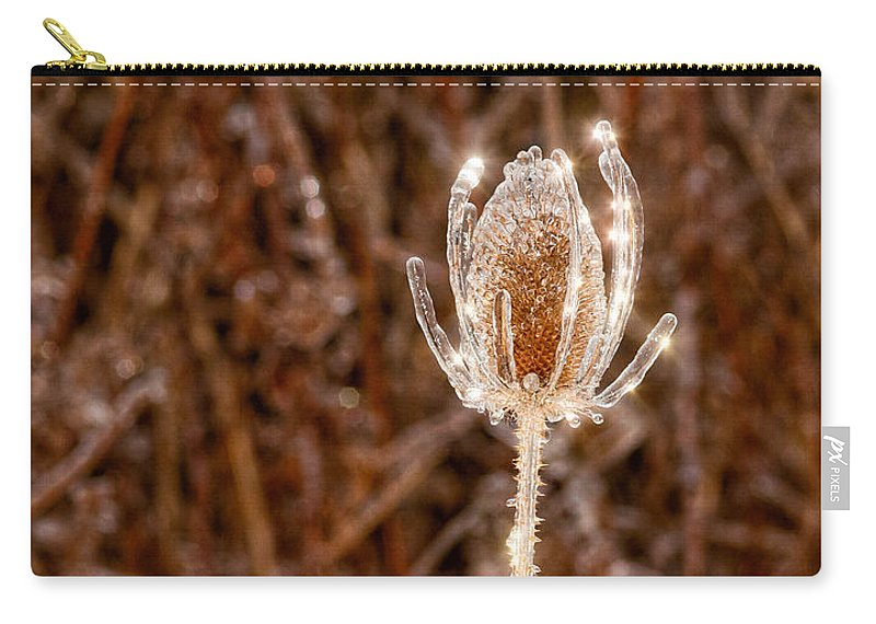 Thistle Carry-all Pouch featuring the photograph Icy Thistle by Les Palenik