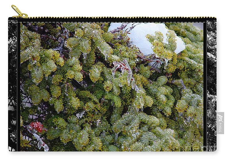 Icy Trees With Black And White Border Carry-all Pouch featuring the photograph Icy Trees With Black And White Border by Barbara Griffin