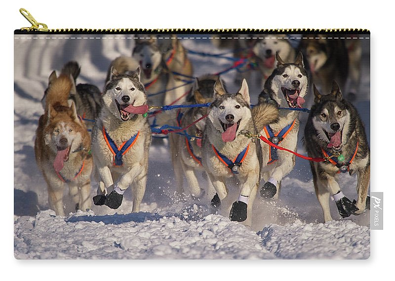 Snow Carry-all Pouch featuring the photograph Iditarod Huskies by Alaska Photography