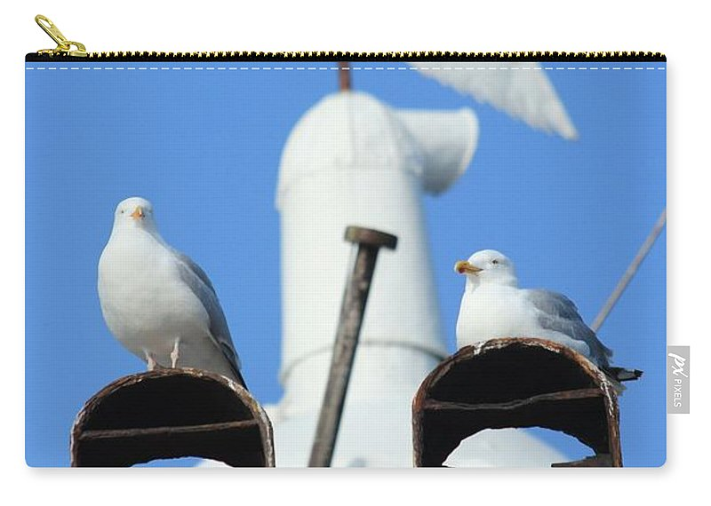 Seagulls Carry-all Pouch featuring the photograph If We Only Had A Sign by Robert Phelan