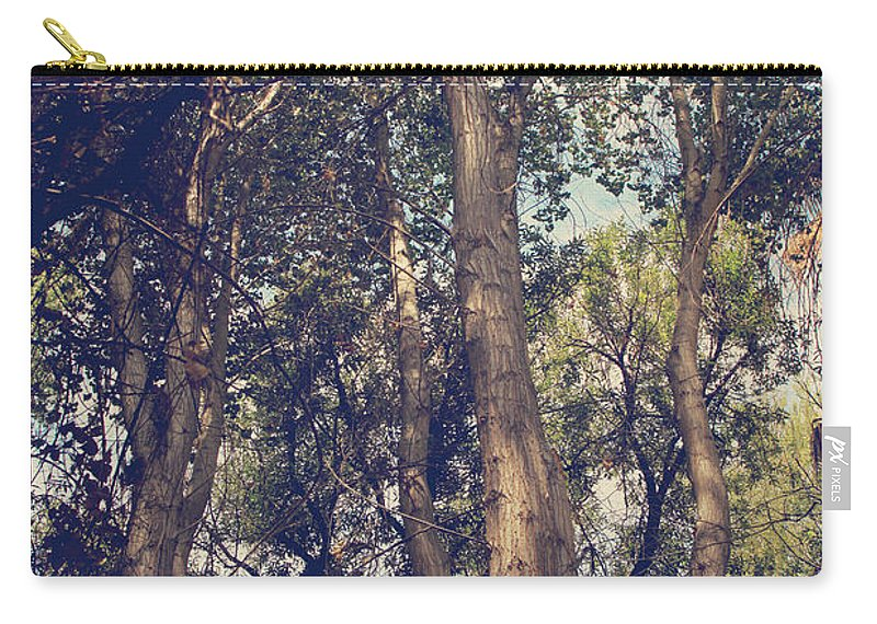Big Morongo Canyon Preserve Carry-all Pouch featuring the photograph I'll Float Up Into The Wavy Trees by Laurie Search