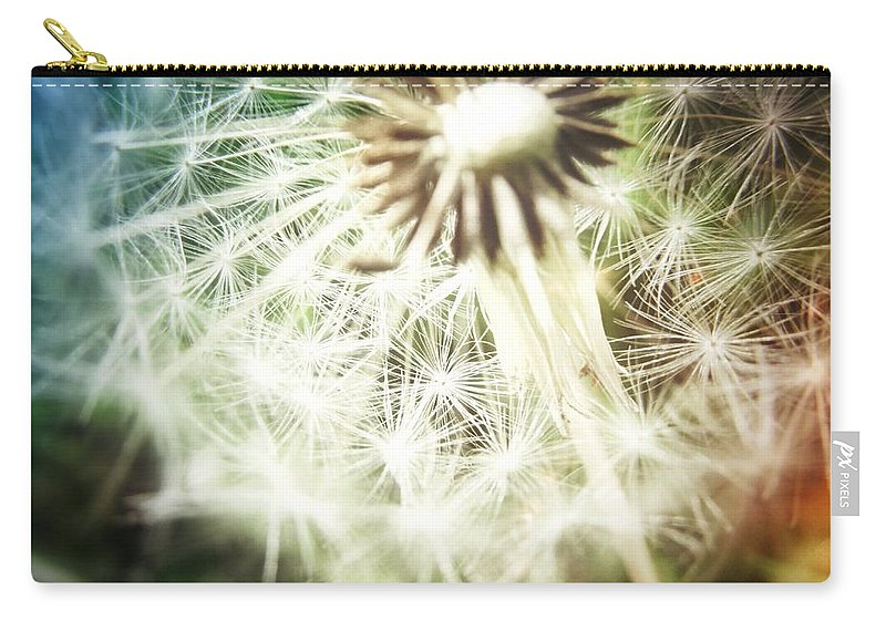 Dandelion Carry-all Pouch featuring the photograph Illuminated Wishes by Marianna Mills