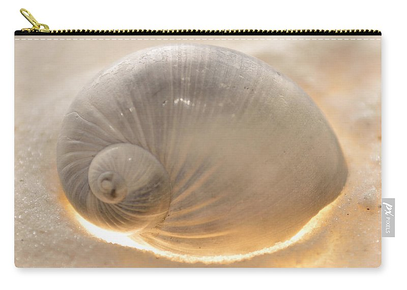 Original Photo Carry-all Pouch featuring the photograph Illumination Series Sea Shells 14 by Sherry Allen