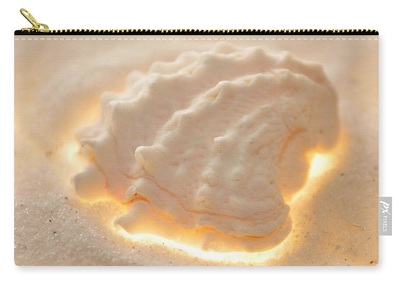 Original Photo Carry-all Pouch featuring the photograph Illumination Series Sea Shells 16 by Sherry Allen