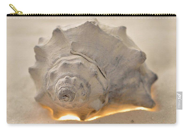 Original Photo Carry-all Pouch featuring the photograph Illumination Series Sea Shells 7 by Sherry Allen