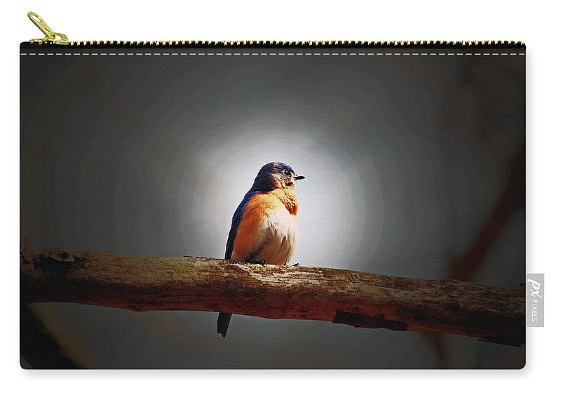 Bluebird Carry-all Pouch featuring the photograph I'm A Bluebird And I'm Beautiful by Lori Tambakis