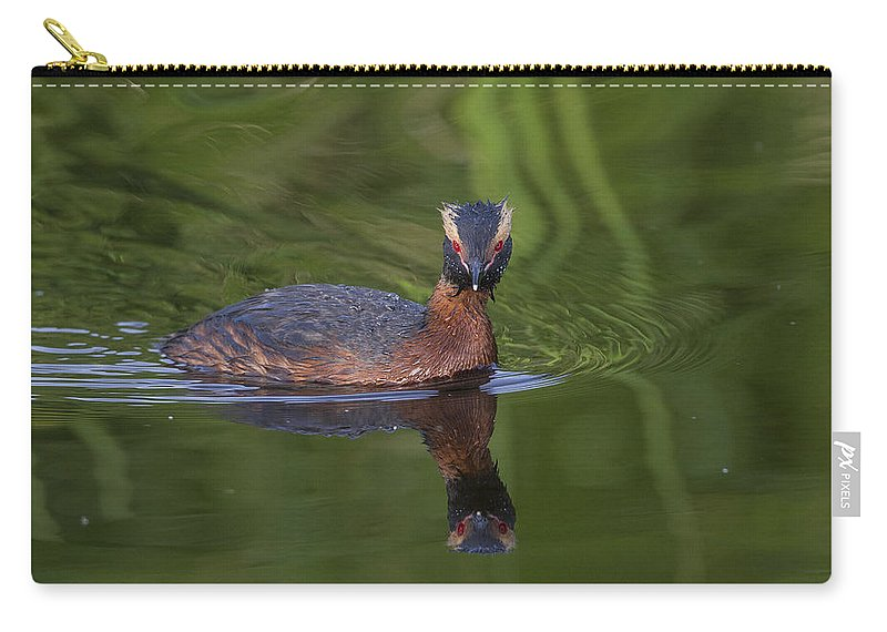 Doug Lloyd Carry-all Pouch featuring the photograph I'm Reflecting by Doug Lloyd