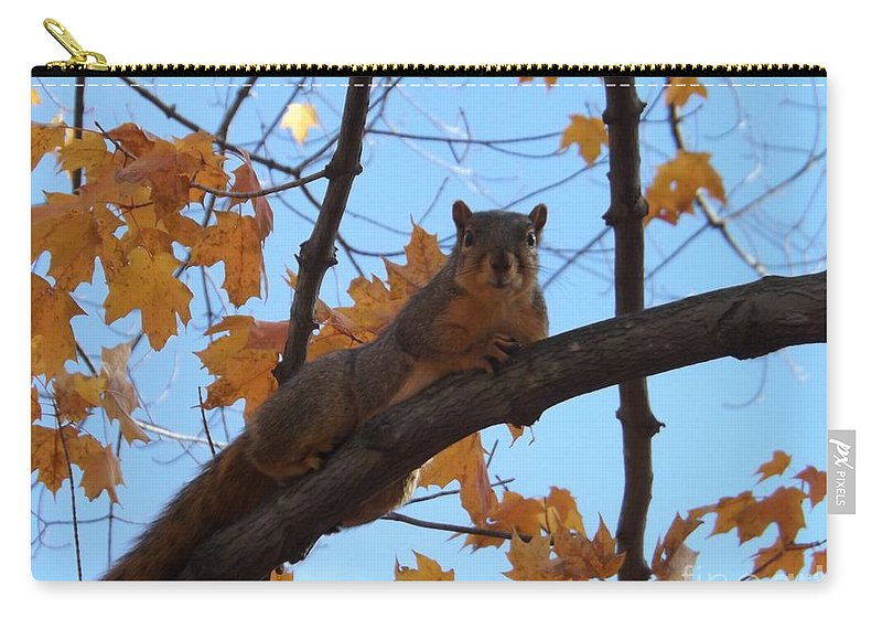 Squirrel Carry-all Pouch featuring the photograph I'm Watching You by Sara Raber