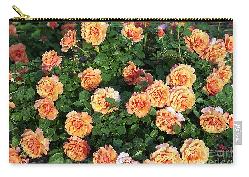 Landscapes Carry-all Pouch featuring the photograph Img 56 by Steve Herndon