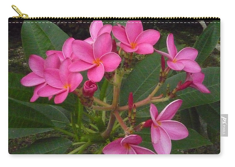 Plumeria Carry-all Pouch featuring the photograph Immaculate Pink Plumerias by To-Tam Gerwe